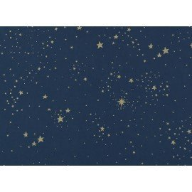 Couverture Laponia gold stella / night blue