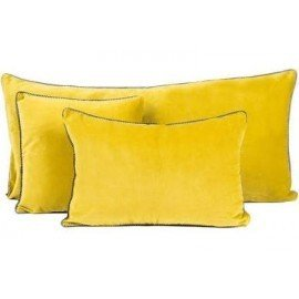 Coussin velours  absinthe 40x60